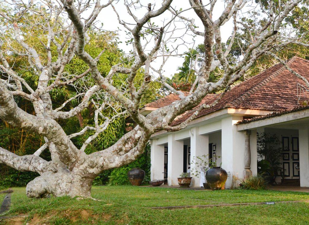 Lanka-Hideaways-Sustainable-Header-CREDIT-CHRIS-ROWLANDS