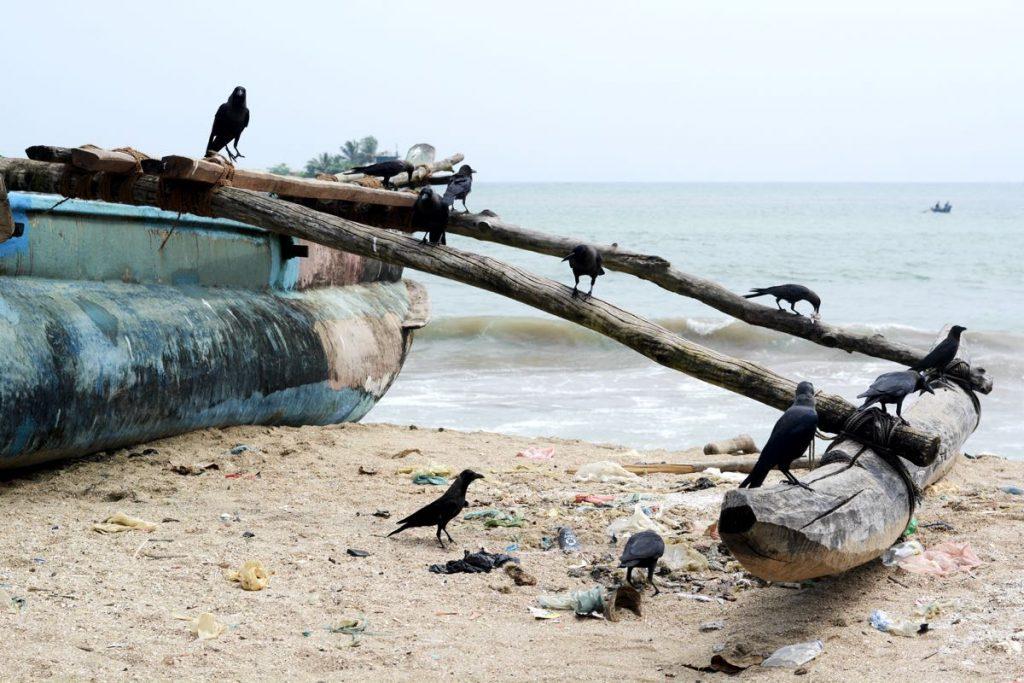 Lanka-Hideaways-Travel-Tips-pollution-CREDIT-CHRIS-ROWLANDS